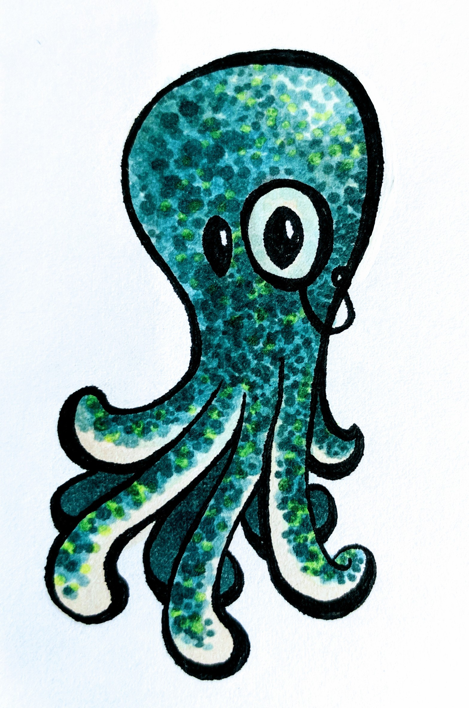 Monocled Octopus